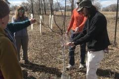 March 2019 Work Day - Tree Pruning Workshop 2