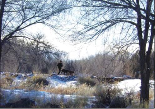 Alamosa City Council accepts Rio Grande trail easement: January 2016