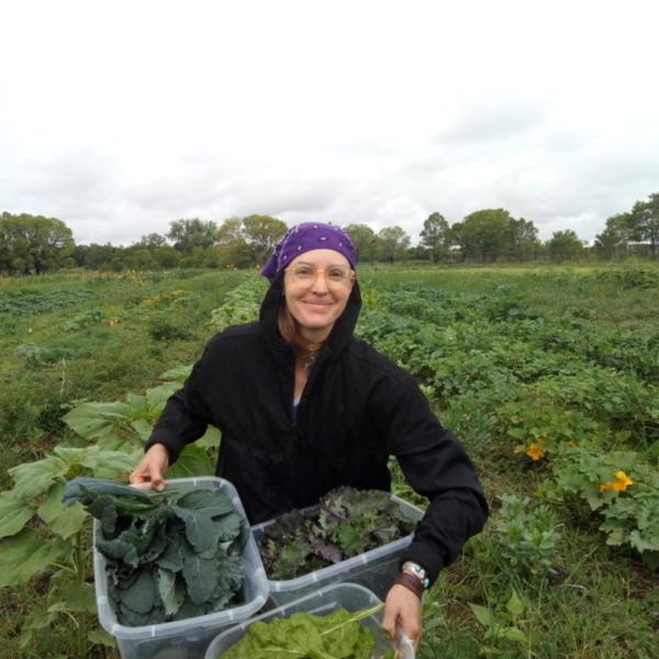 Rio Grande Farm Park Farmers Supply Local Food Pantries with $24,000 Worth of Produce in Pilot Year, 2020